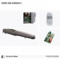 Set Drehtorantrieb CAME AXO AX5024/1