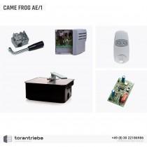 Set Unterflurantrieb CAME FROG AE/1
