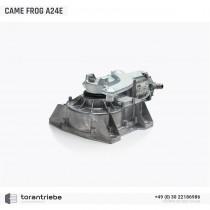 Unterflurantrieb CAME FROG A24E