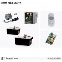 Set Unterflurantrieb CAME FROG A24E/2