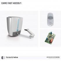 Set Drehtorantrieb CAME FAST 40230/1